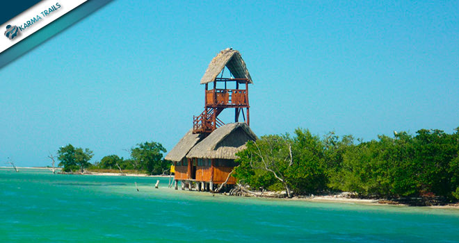 Playa del Carmen and Holbox Package