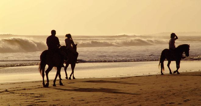 HORSEBACK RIDING (f/HOLBOX)